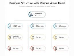 Business Structure With Various Areas Head