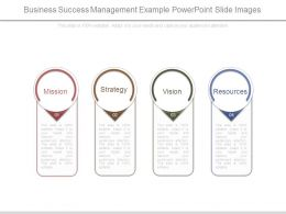 Business Success Management Example Powerpoint Slide Images