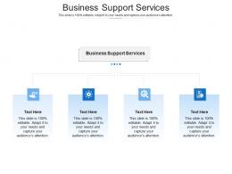 Business Support Services Ppt Powerpoint Presentation Slides Introduction Cpb