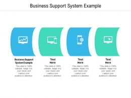 Business Support System Example Ppt Powerpoint Presentation Infographic Template Slide Download Cpb
