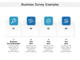 Business Survey Examples Ppt Powerpoint Presentation Infographic Template Files Cpb