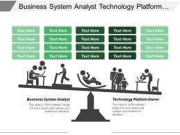 Business System Analyst Technology Platform Owner Portfolio Management