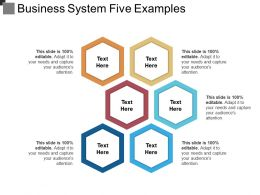 Business System Five Examples