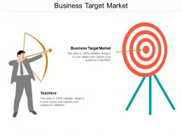 Business Target Market Ppt Powerpoint Presentation Outline Guide Cpb