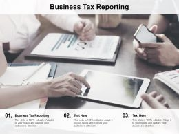 Business Tax Reporting Ppt Powerpoint Presentation File Infographic Template Cpb