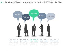 Business Team Leaders Introduction Ppt Sample File