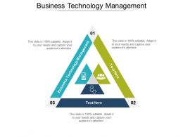 Business Technology Management Ppt Powerpoint Presentation File Microsoft Cpb