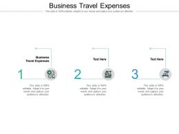 Business Travel Expenses Ppt Powerpoint Presentation Gallery Influencers Cpb