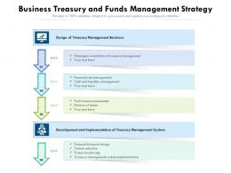 Business Treasury And Funds Management Strategy