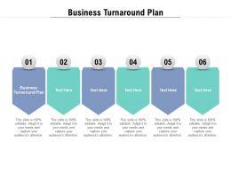 Business Turnaround Plan Ppt Powerpoint Presentation Icon Gridlines Cpb