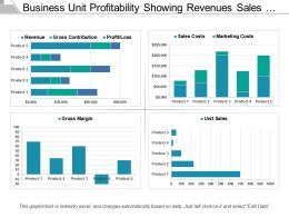 Business Unit Profitability Showing Revenues Sales Costs Unit Sales