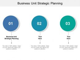 Business Unit Strategic Planning Ppt Powerpoint Presentation Ideas Graphics Pictures Cpb