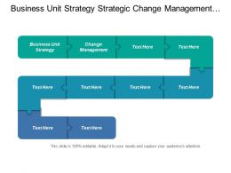 Business Unit Strategy Strategic Change Management Strategic Programmes