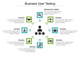 Business User Testing Ppt Powerpoint Presentation Outline Graphics Tutorials Cpb