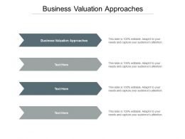 Business Valuation Approaches Ppt Powerpoint Presentation Model Clipart Images Cpb