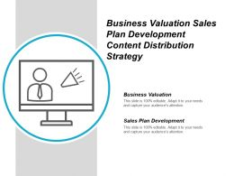 Business Valuation Sales Plan Development Content Distribution Strategy