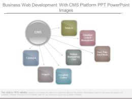 Business Web Development With Cms Platform Ppt Powerpoint Images