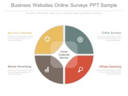 Business Websites Online Surveys Ppt Sample
