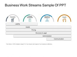 Business Work Streams Sample Of Ppt