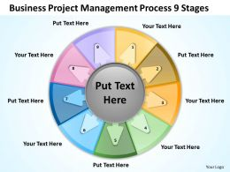 Business Workflow Diagram Project Management Process 9 Stages Powerpoint Slides