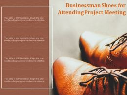 Businessman Shoes For Attending Project Meeting