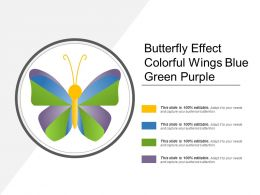 Butterfly Effect Colorful Wings Blue Green Purple