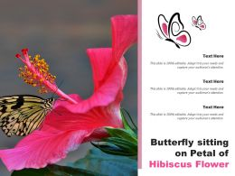 Butterfly Sitting On Petal Of Hibiscus Flower