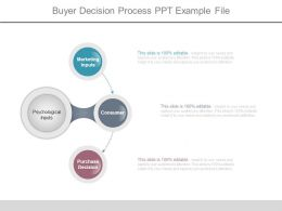 Buyer Decision Process Ppt Example File