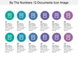 By The Numbers 12 Documents Icon Image