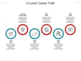 C Level Career Path Ppt Powerpoint Presentation Infographics Summary Cpb