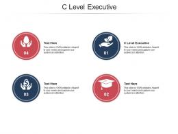 C Level Executive Ppt Powerpoint Presentation Icon Elements Cpb