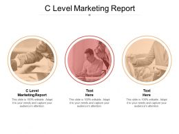 C Level Marketing Report Ppt Powerpoint Presentation File Outline Cpb