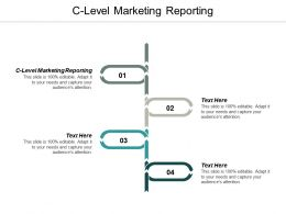 C Level Marketing Reporting Ppt Powerpoint Presentation Ideas Professional Cpb