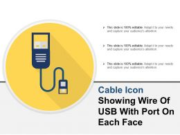 Cable Icon Showing Wire Of Usb With Port On Each Face
