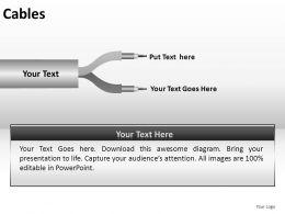 Cables Powerpoint Presentation Slides