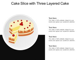 Cake Slice With Three Layered Cake