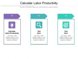 Calculate Labor Productivity Ppt Powerpoint Presentation Ideas Templates Cpb