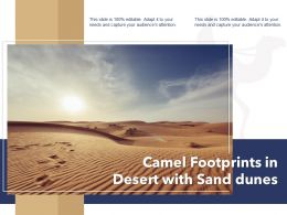 Camel Footprints In Desert With Sand Dunes