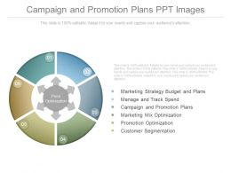 Campaign And Promotion Plans Ppt Images