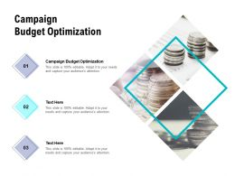 Campaign Budget Optimization Ppt Powerpoint Presentation Layouts Deck Cpb