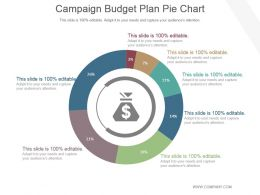 Campaign Budget Plan Pie Chart Powerpoint Ideas