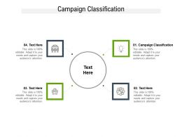 Campaign Classification Ppt Powerpoint Presentation Outline Templates Cpb