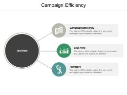 Campaign Efficiency Ppt Powerpoint Presentation Ideas Background Image Cpb