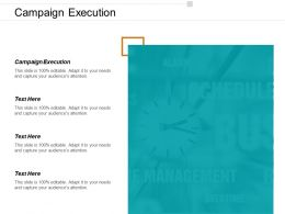 Campaign Execution Ppt Powerpoint Presentation Icon Graphics Download Cpb