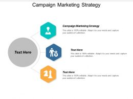 Campaign Marketing Strategy Ppt Powerpoint Presentation Gallery Influencers Cpb