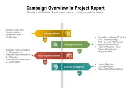 Campaign Overview In Project Report
