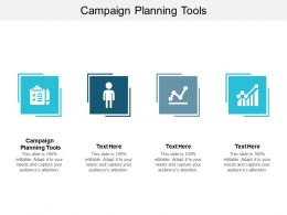 Campaign Planning Tools Ppt Powerpoint Presentation Model Examples Cpb