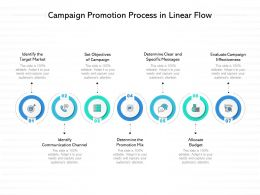 Campaign Promotion Process In Linear Flow