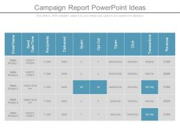 Campaign Report Powerpoint Ideas