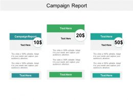 Campaign Report Ppt Powerpoint Presentation File Slides Cpb